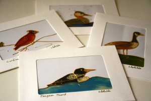 Clothilde_ Leblanc-cartes collection des oiseaux du quebec